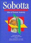 img - for Sobotta Atlas of Human Anatomy: Thorax, Abdomen, Pelvis, Lower Limb (12th Eng ed. Vol 2) book / textbook / text book