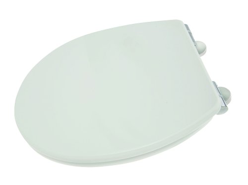 Croydex Premium Anti-Bacterial Toilet Seat with Slow Close Hinges, White