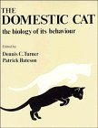 img - for Domestic Cat by Dennis Turner (1989-01-27) book / textbook / text book