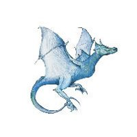 DRAGON 2 Temporary Tattoo 2.5x3.5