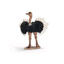 Ostrich Male from Schleich Toys - 1