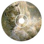 Wild Spirit by John Seerey-Lester