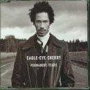 Eagle Eye Cherry - Permanent Tears - Zortam Music