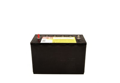 ACDelco 31AGMDCT Professional Absorbed Glass Mat (AGM) Battery