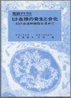 電顕アトラス ヒト血球の発生と分化―幻の血液幹細胞を求めて