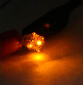 TOYOTA Prius Tail Light Bulb - LED - OEM (pair)