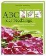 ABC der Stecklinge: Richtig vermehren, ziehen, auspflanzen und pflegen