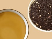 シェドゥーブル 紅茶 マサラチャイ Masara Chai 50g
