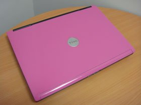 Unique Dell Latitude D620 Laptop in PINK