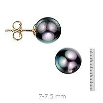 AA Quality Round 7-7.5mm Akoya Black Pearl Earrings with 14K Gold Mount
