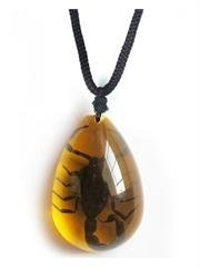 Medium Black Scorpion Necklace in Amber Background on a Black Cord That Adjusts up to 22