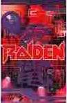 Raiden (PC Computer Game)