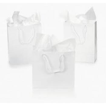 Fun Express IN-26/515 Gift Bags, Medium, White, Pack of 12