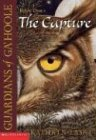 The Capture (Guardians of Ga'hoole), Buch
