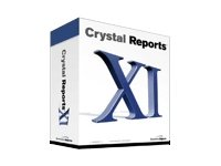 Crystal Reports XI Professional Edition - Complete package - 1 named user - Win