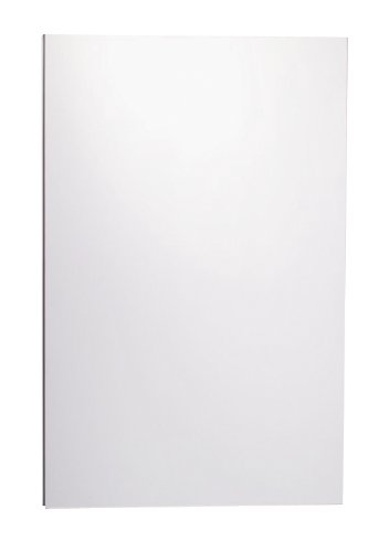 Robern MT20D4FPN M Series Flat Plain Mirror Cabinet, 19-1/4-Inch W by 30-Inch H by 4-Inch D