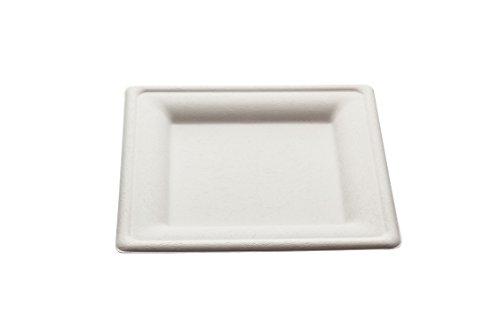 Piatto quadrato Design monouso 20 cm - 50 pz - Biodegradabili e Compostabili