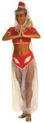 I Dream of Jeannie Adult Costume - Standard