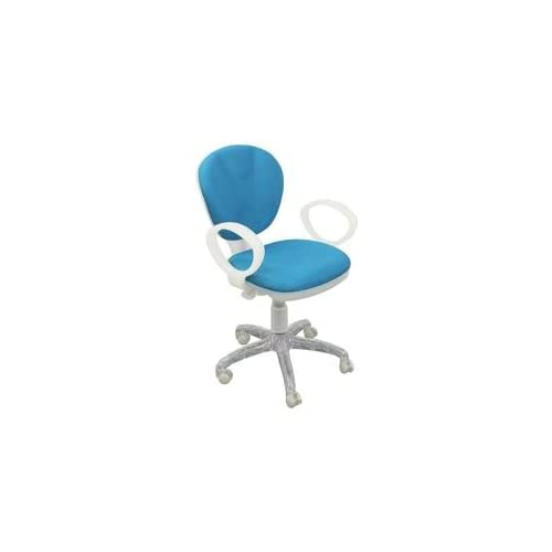 Amazon.com: Turquoise Computer Chair [WL-1156-TURQUOISE-GG]