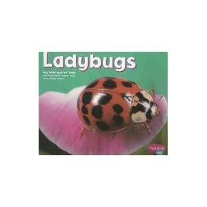 Ladybugs (Bugs Bugs Bugs)