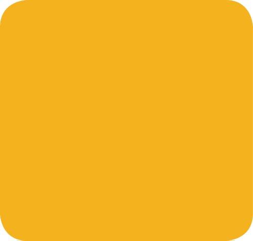Jillson Roberts Solid Color Tissue, Pastel Orange, 48-Sheet Count (FT59)