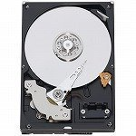 WESTERN DIGITAL 3.5インチ内蔵HDD 640GB Serial-ATA3.0Gb 7200rpm 16MB WD6400AAKS