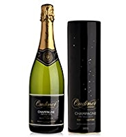 Oudinot Vintage 2004 Champagne & Swarovski Tin - Single Bottle
