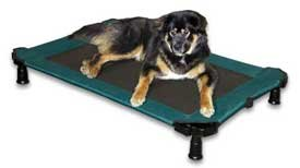 Pet Gear Portable Dog Cot - Large (Moss Green)
