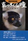 真っすぐな瞳―動物写真詞集