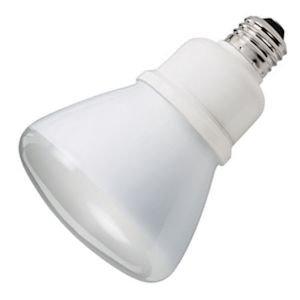 R30 Led Bulbs