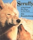 scruffy: a wolf finds his place in the pack