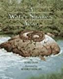 A Water Snake's Year