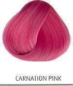 directions-pink-carnation-89ml-carnation-pink