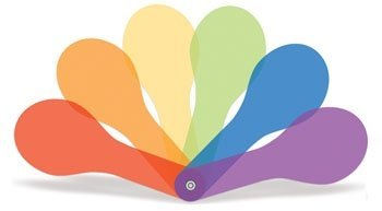 "Colour Paddles (Set of Six) 6"""