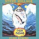 Fish Rising by Hillage, Steve (1991-07-01)