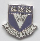 Bognor Regis West Sussex County Pin Badge