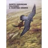 North American Falconry & Hunting Hawks ~ Frank Lyman Beebe