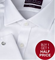 2in Longer Satorial Pure Cotton Non-Iron Slim Fit Twill Shirt
