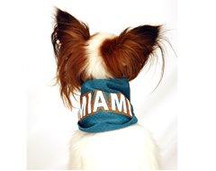 Sports Enthusaist Miami Football Dog Bandana (Large)