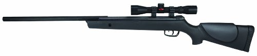 Gamo 6110065654 Big Cat 1250 .177 Caliber Air Rifle with Scope (Gamo Air Rifle Targets compare prices)