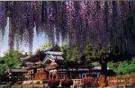 500ピース 藤咲く季節-平等院-