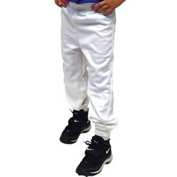 Buy Elastic Waist Baseball Pant - Adult by Alleson Athletic