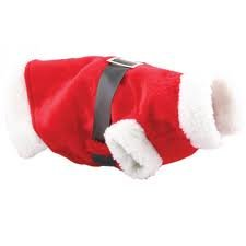 Small Dog Christmas Santa Suit