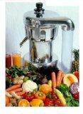 Nutrifaster N450 Multi Purpose Juicer
