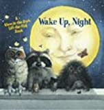 Wake Up, Night (A Glow-in-the-Dark, Lift-the-Flap Book)