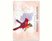 cardinal-eco-notes