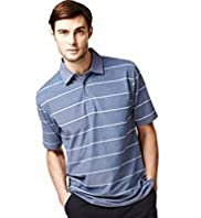 Birdseye Striped Polo Shirt