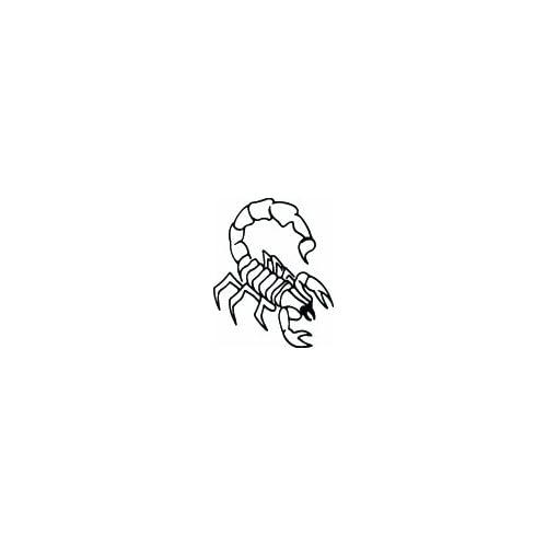 """Amazon.com: 8"""" BLACK scorpion outline facing right. Vinyl die cut"""