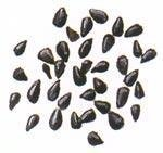 Kalonji (Onion Seeds / Nigella) 7oz by Spicy World