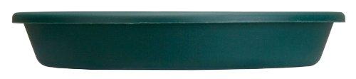 Akro Mils SLI06000B91 6-Inch Classic Saucer, Evergreen
